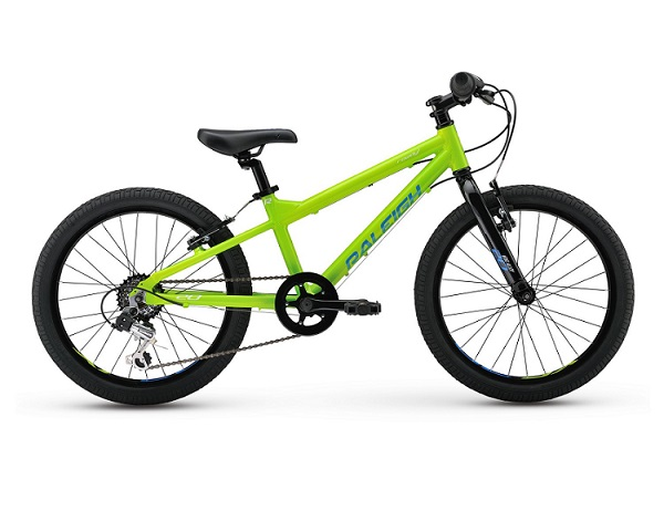 Raleigh Rowdy 20 Review