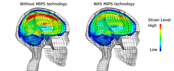 MIPS Technology